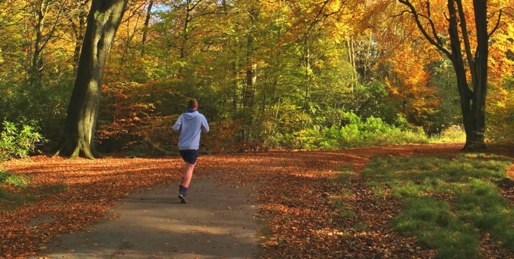 löpning-på-hösten